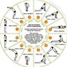 Yoga For Beginners Guide