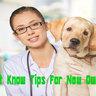 Dog food advise