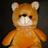 teddy-bear-gift
