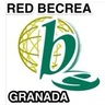 Red profesional Bibliotecas Escolares Granada BECREA