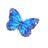 butterfly530